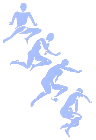 feldenkrais-methode-regina-zimmermann-bluemen